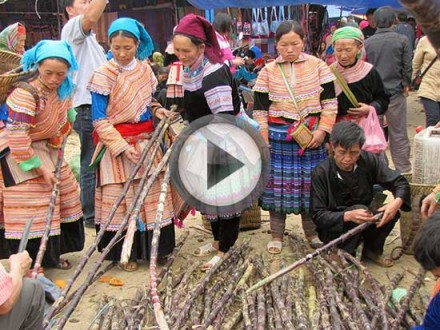 vietnam-2013-play